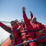 Marine wildlife, vancouver, boat tours